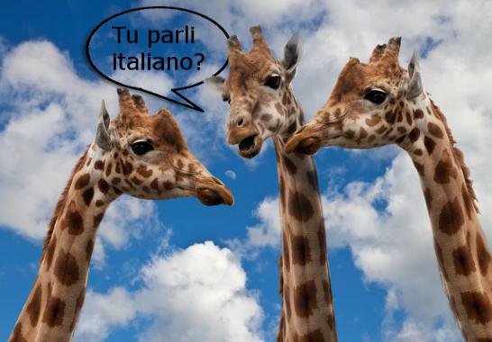 Italian speaking practice